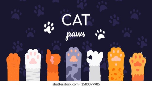 Cat paws collection - flat design style illustration on dark background. A set of hand gestures, ok, thumb up symbols. Feet of different kittens, ginger, white, grey, tabby. Cute pets footprints