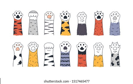 Cat paws. Doodle animal foot, cute cartoon kitten and puppy paws, wild and domestic animals foots. Vector drawing kitty and dog different breed pet set on white background