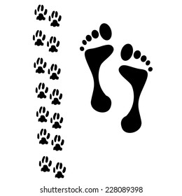 cat paws and human foot. vector illustration