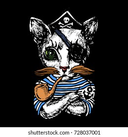 Cat The pirate hand drawn sketch stock vector illustration
