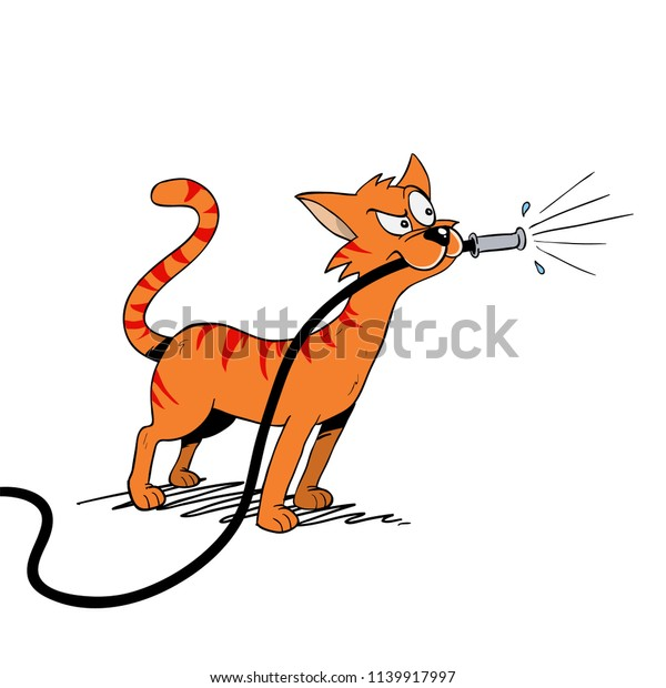 Cat Playing Water Hose Stock Vector (Royalty Free) 1139917997