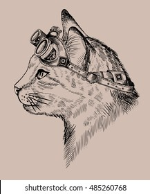 Cat, portrait steam-punk, Blue eyes, with retro glasses, in etching style, print,  isolated,drawing,  fantasy, vector, cat sketch, art, cat punk cute