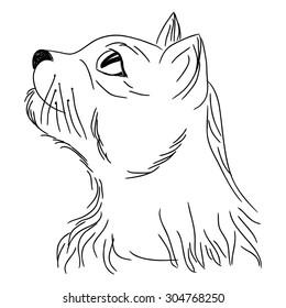 cat profile looking portrait sketching cartoon stock illustration