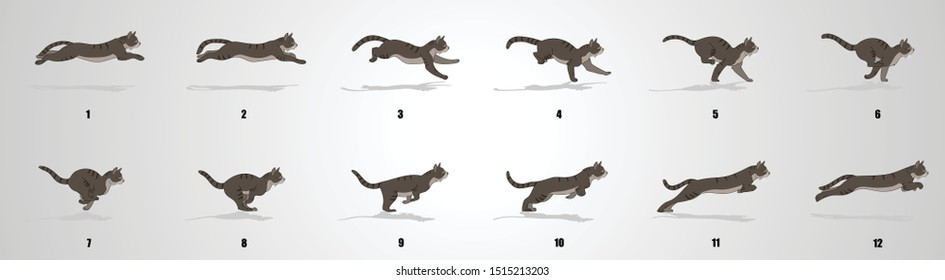 Cat Run cycle Animation sequence, animation frames