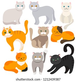 Cat. Set of flat cartoon icons. Vector illustration. Kitty, Pets. Exotic and ordinary cats.