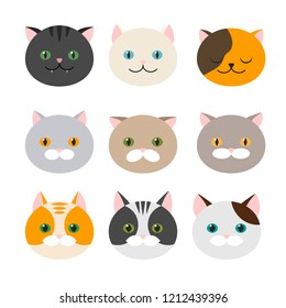 Cat. A set of flat feline head icons. Vector illustration. Kitty, Pets. Exotic and ordinary cats.