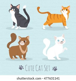 Cat Set, flat icons. Vector Illustration Cartoon