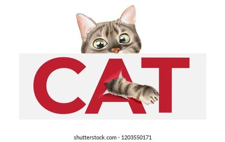 cat sign with cat illustration