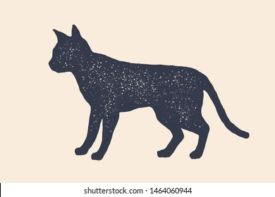 Cat, silhouette. Concept design of domestic animals - Cat or kitten, side view profile. Isolated black silhouette cat or kitten on white background. Vintage retro print, icon. Vector Illustration