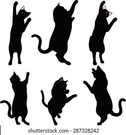 cat silhouette in Reach pose isolated on white background