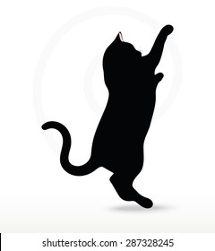 cat reaching stock images royaltyfree images  vectors