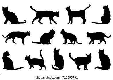 Cat silhouette, vector illustration