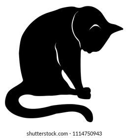 Cat sitting silhouette