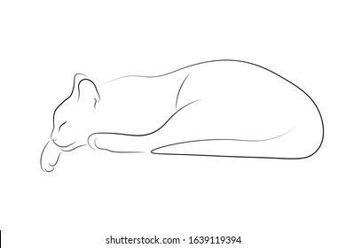 Cat sleeping simple linear design. Black thin line sketch isolated on white background. Vector illustration