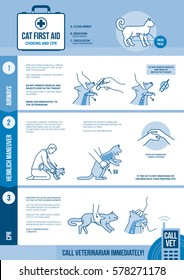 Cat and small animals cpr and first aid for choking and reanimation emergency procedure