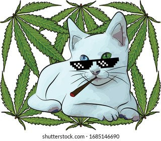 Cat thug life 420.Vector illustration and cannabis sativa forma indica.Weeds background