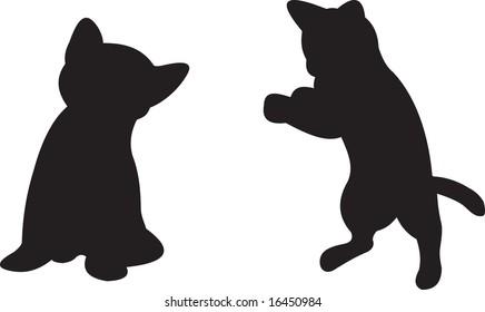 cat, vector