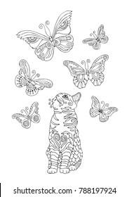 Illustrations Images Et Images Vectorielles De Stock De Chat