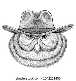 Cat wearing cowboy hat. Wild west animal. Hand drawn image for tattoo, emblem, badge, logo, patch, t-shirt