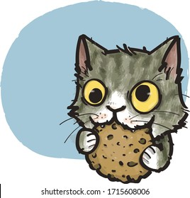 the cat who crazy about cookies like cookies monster