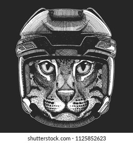 Cat Wild animal wearing hockey helmet. Print for t-shirt design.