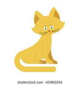Cat yellow isolated. Cute kitten sits on white background
