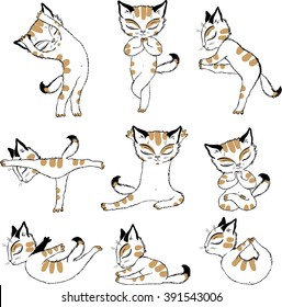 Cat yoga funny vector chest print for t-shirt
