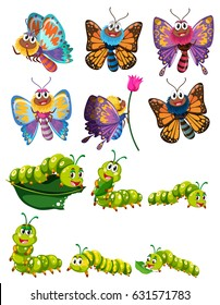 Caterpillars and butterflies with colorful wings illustration