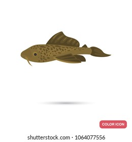 Catfish aquarium fish color flat icon
