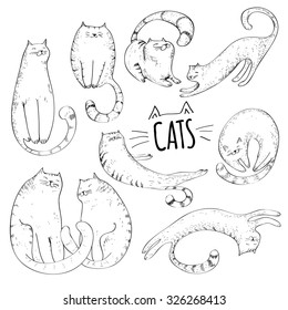 Cats collection of hand drawn cute character.