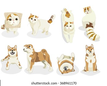 Cats and Dogs characters. Cartoon styled vector illustration. Shiba inu. tabby set of funny pets.