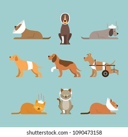 Cats and Dogs Get Sick, Injured, Hurt, Wounded, Vector Set