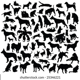 cats and dogs silhouette collection