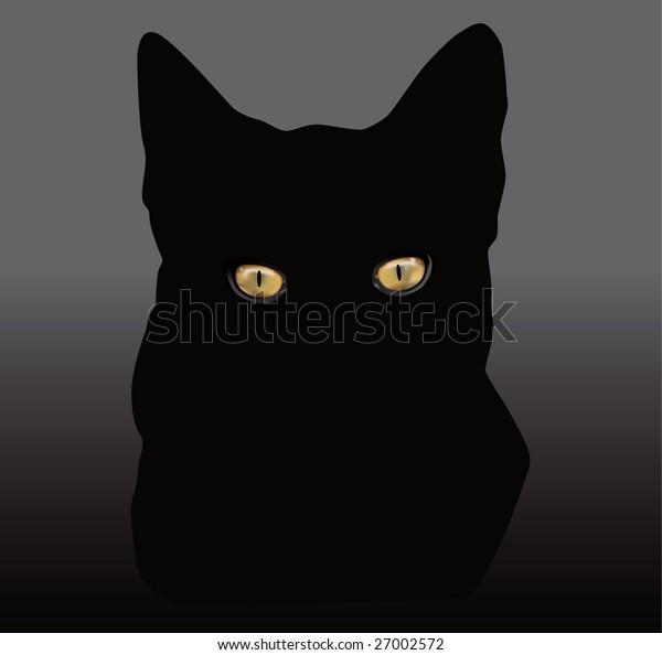 Cat's eyes glowing in the dark