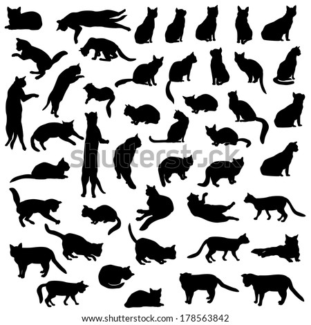 cats silhouette set kitten different pose stock vector