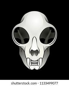 Cat's Skull. Vector illustration of a skull of a domestic cat on black background.