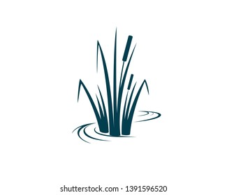 cattail, a wetland plants in a simple line with