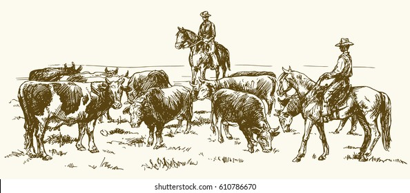 Cattle drive by two cowboys, hand drawn vector illustration.