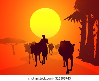 Cattle Returning Home