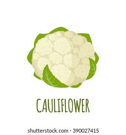 Cauliflower icon in flat style.  Isolated object. Cauliflower logo. Isolated object. Vegetable from the garden. Organic food. Vector illustration.