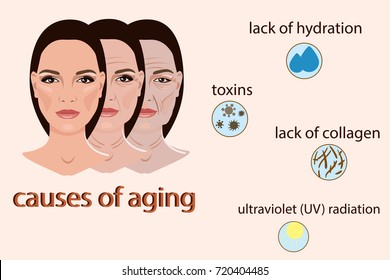 Causes of aging, vector illustration with two faces and small pictures