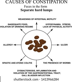 Causes of constipation. Sheep feces Infographics. Vector illustration on isolated background.