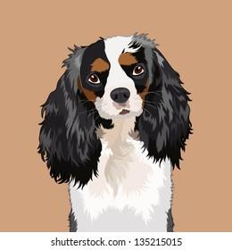 Cavalier king charles spaniel, The buddy dog