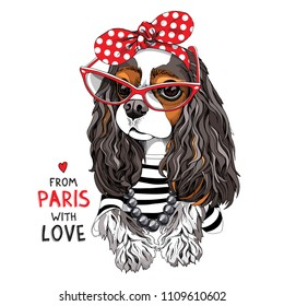 Cavalier King Charles Spaniel Dog in a striped cardigan, in a red sunglasses and with a polka dot headband. Lettering quote - from Paris with love. Vector illustration.
