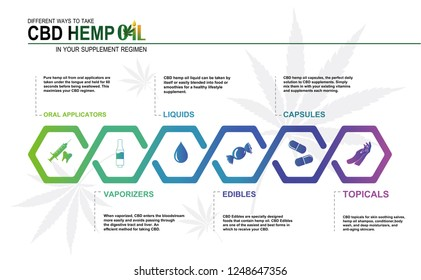 CBD hemp oil in your supplement regimen,vector infographic icon on white background and poster.