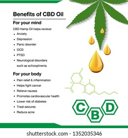 cbd oil benefit for your mind and your body infographic on white background.