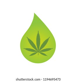 CBD oil cannabis extract. Medical Cannabis oil icon design with Marijuana leaf and hemp oil drop. Icon product label and logo graphic template. Isolated vector illustration on white background.