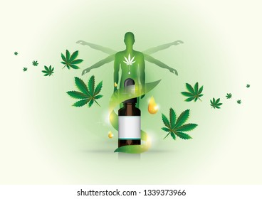 CBD oil receptors of the body's effects and cannabis affecting the treatment of the human body in posters.