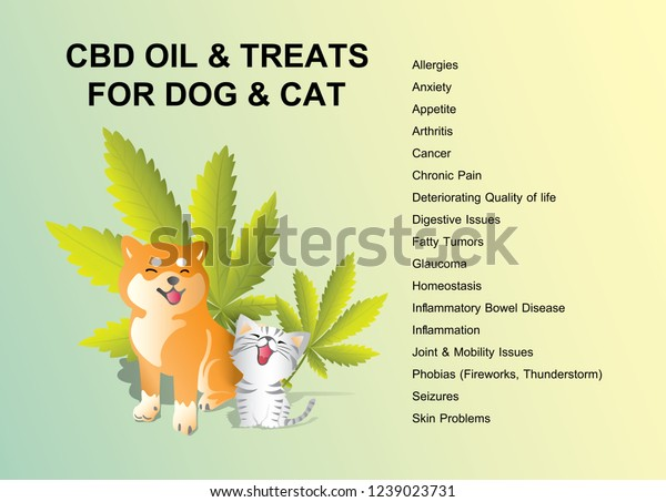 CBD oil and treats for dog & cat is healthy medical infographic