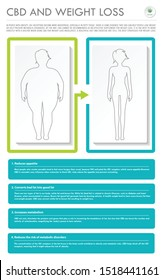 CBD and Weight Loss vertical business infographic illustration about cannabis as herbal alternative medicine and chemical therapy, healthcare and medical science vector.
